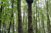 ARUPi - una unidad de grabación automatizada de bajo costo para ecologistas del paisaje sonoro