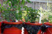 Dearthbox: Una jardinera de bajo costo, uno mismo-riego