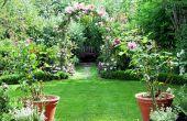 ¿Cómo a cultivar su propio jardín del Edén