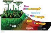Cómo se forman chimeneas fósiles
