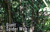 Tela de araña gigante