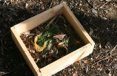 Mini papelera de Compost portátil de madera