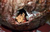 Cómo hacer un Placenata