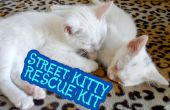 Calle Kitty rescate Kit