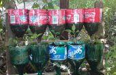 Jardín de la hierba de la botella – un proyecto de reciclaje.