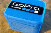 Estilo de Pelican de GoPro DIY caja * 100% desechos domésticos *