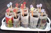 Cómo hacer plantación orgánica ollas con periódicos viejos
