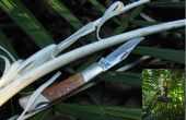 Selva supervivencia - alimentos - Col de Palma (con sólo una navaja de bolsillo)