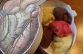 Corazones de Chocolate anatómica (su único Valentine, PT. 2)