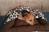 Cama con manta desprendible del perro