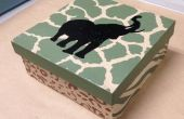 Divertido y fácil DIY impresión de la pantalla en caja de cartón pueden hacer en casa!