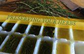 Conservar hierbas - aceite de oliva