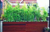 Nueva York azotea jardín de diseño - cubierta y plantadores contemporáneos