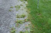 Herramienta de eliminación de malas hierbas final