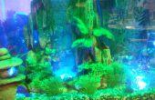 Iluminación LED del acuario interactiva