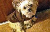 Cálido y acogedor chaqueta de perrito Simple y barato!