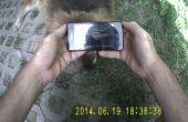 Tutorial de collar de perro de código de QR, prueba de vídeo