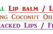Bálsamo natural para los labios lápiz labial con aceite de coco al talón agrietado labios o agrietada de los talones.