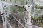 Arañas de tamaño mediano