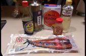 Anguila de la barbacoa japonesa - Unagi Hitsumabushi