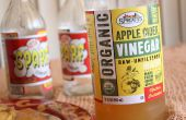 Elixir de vinagre de sidra de manzana