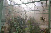 Hacer tu propio invernadero (construcción, planta y cuidado)