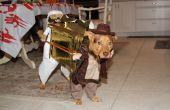 Traje de 2012 de Cody.  Indiana Jones y Sallah llevando el arca