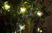 6 consejos sobre cómo elegir la iluminación del paisaje Solar.