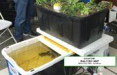 SENSOR SET prueba y BOSQUEJOS--de aquaponic jardín balcón