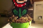 Cómo hacer una planta Piraña con un tubo de