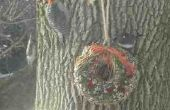 Guirnalda de semillas de pájaro