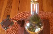 """""""El jardín del Steampunk"""" en un bulbo"""