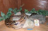 Seguridad y eficiencia en recintos de grandes reptiles