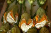 Fiori di Zucca ripieni ~ flores de calabacín relleno