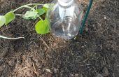 Botellas de riego por goteo DIY