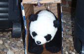 Cómo coger a un Panda
