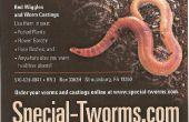 Lombrices rojas tworms.com especial compostaje worms / gusanos de pesca