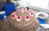 Porta torta (no mentira)