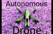 Loro autónoma AR Drone 2.0 vuelo