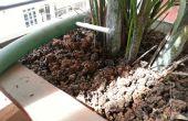 Inicio sistema de riego de planta