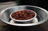 Combinar el tazón de alimento y agua perro para defenderse contra las hormigas. Mantener las hormigas fuera de la comida para perros.