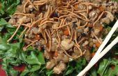 Chino pollo ensalada (lechuga No-wrap envuelve)
