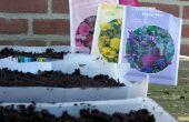Cajas de planta caseros
