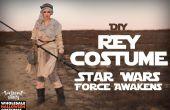 Star Wars: DIY traje de Rey