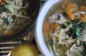 Mi sopa de fideos de pollo caseros ultimate con zanahoria, limón y eneldo