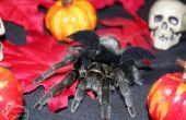 Disfraz de Halloween de murciélago Tarantula