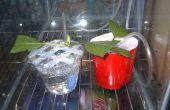 Suciedad baratos Areated clonación sistema para plantas