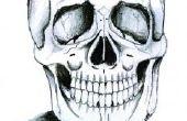 Cómo dibujar una cabeza de esqueleto