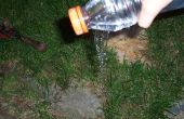 Pico de la botella de agua