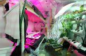 Cómo construir un jardín hidropónico de sótano